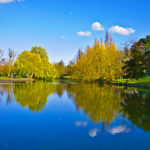 10 secret lavender fields that should be on your uk summer bucket list