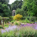 Wisteria & lavender cologne jo malone london для мужчин и женщин